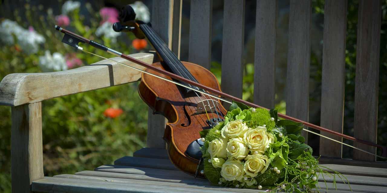 ヴァイオリンの維持費は月平均いくらかかるのか