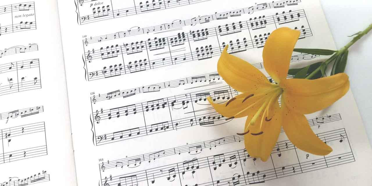 楽譜が読めないと絶対に損をする理由